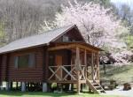 春のログハウス
